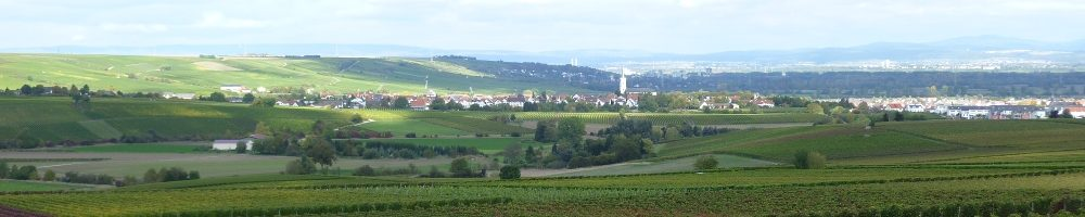 Weinhof Leber